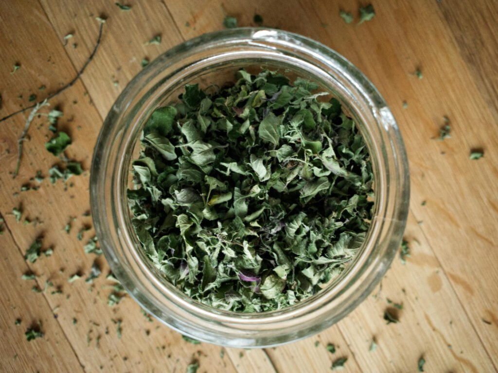 Drying herbs complete - a glass jar filled with dried oregano leaves